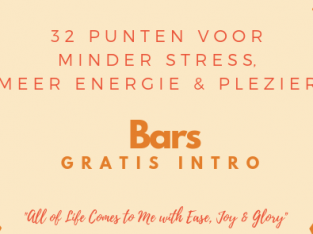 Gratis intro Bars en Access Consciousness