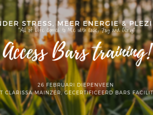 Bars Training Diepenveen