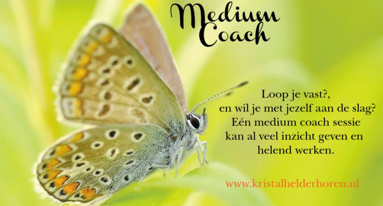 Medium Coach Consulten