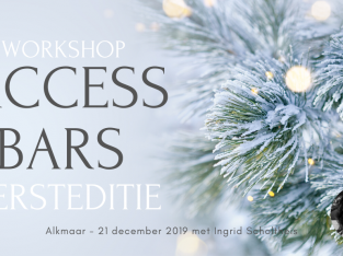 Access Bars Workshop – 21 december – Kersteditie